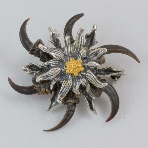 Vogelkrallen-Silberdistel, Brosche